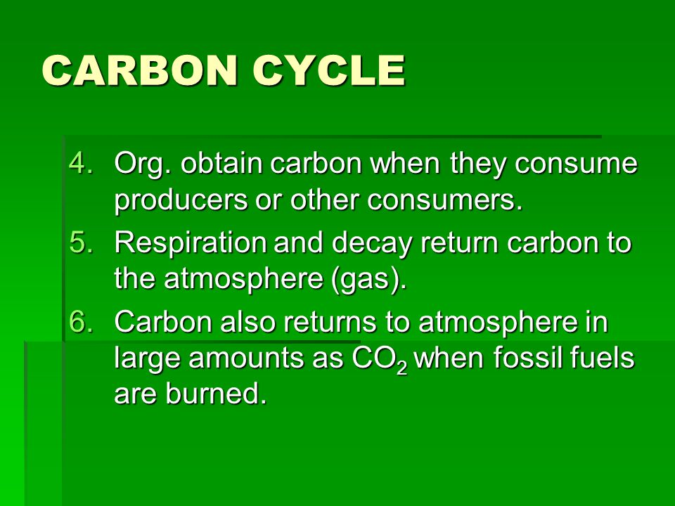 CARBON CYCLE Org. obtain carbon when they consume producers or other consumers. Respiration and decay return carbon to the atmosphere (gas).