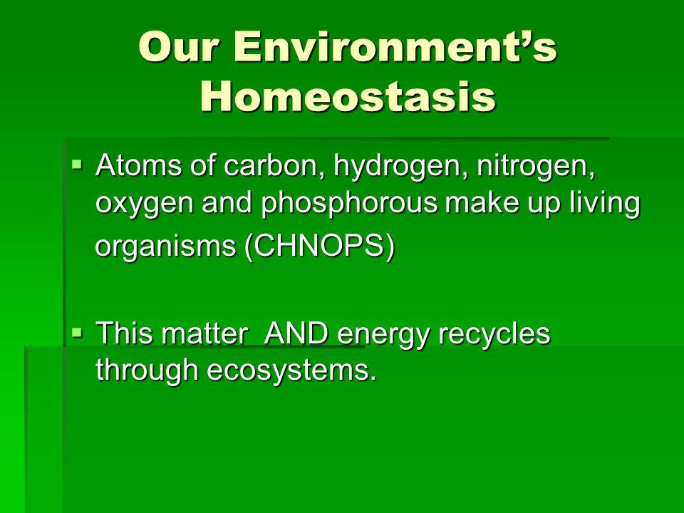 Our Environment's Homeostasis
