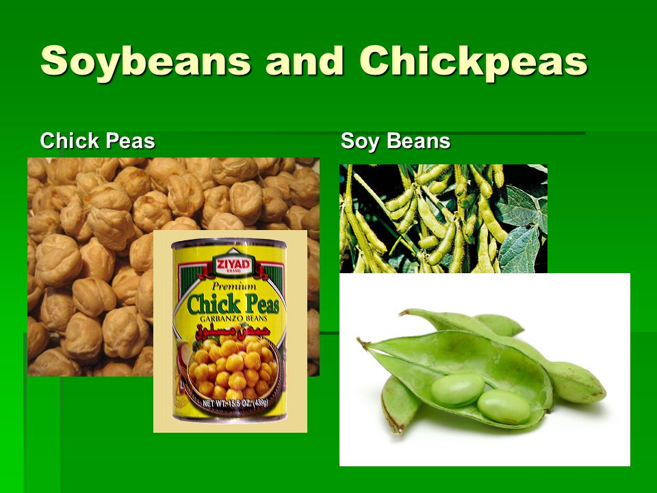 Soybeans and Chickpeas