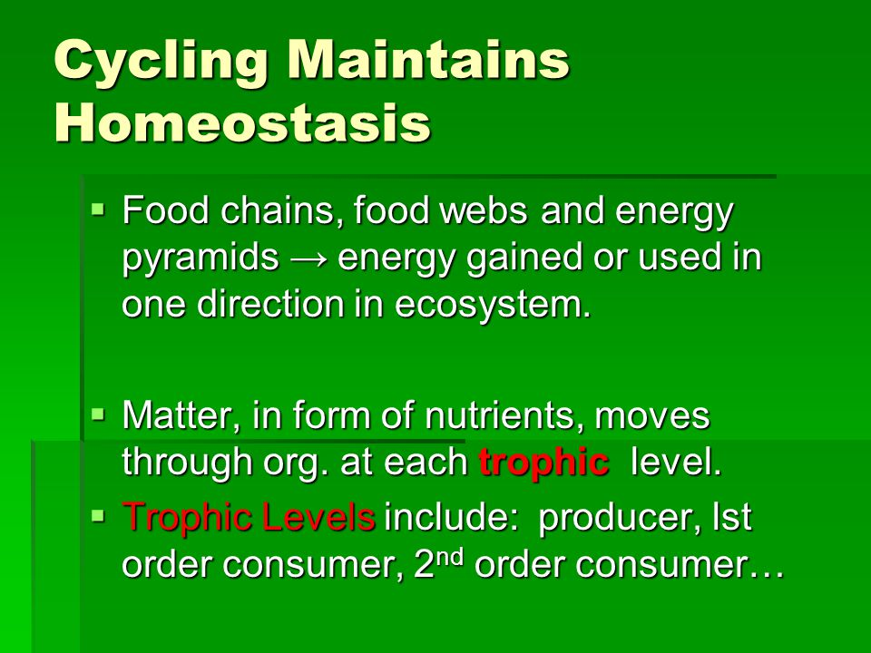 Cycling Maintains Homeostasis