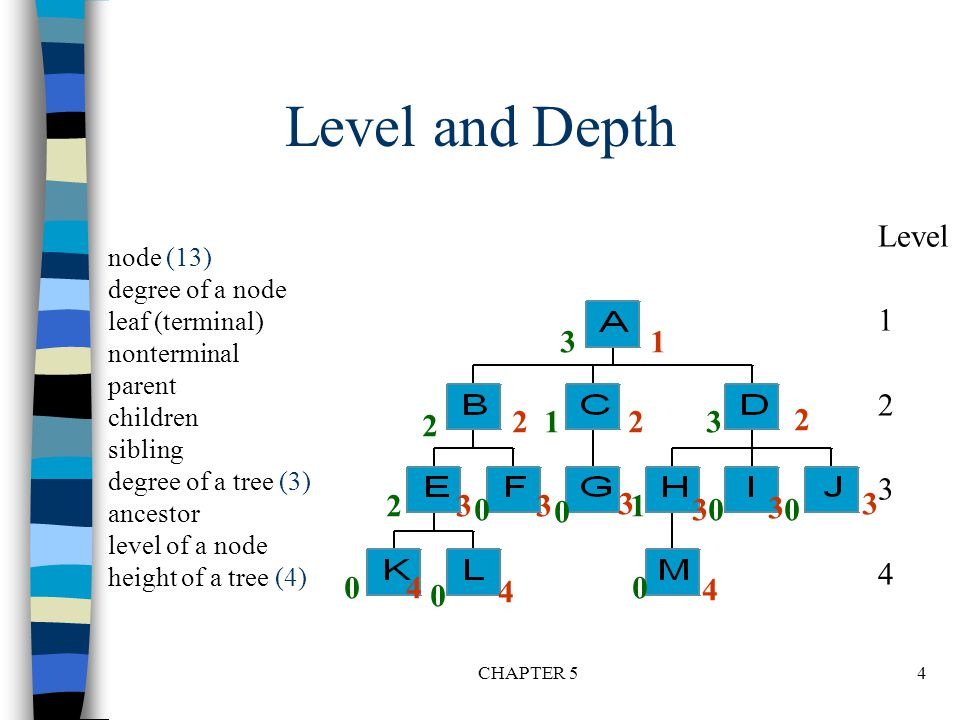 Level and Depth Level. 1. 2. 3. 4. node (13) degree of a node. leaf (terminal) nonterminal.