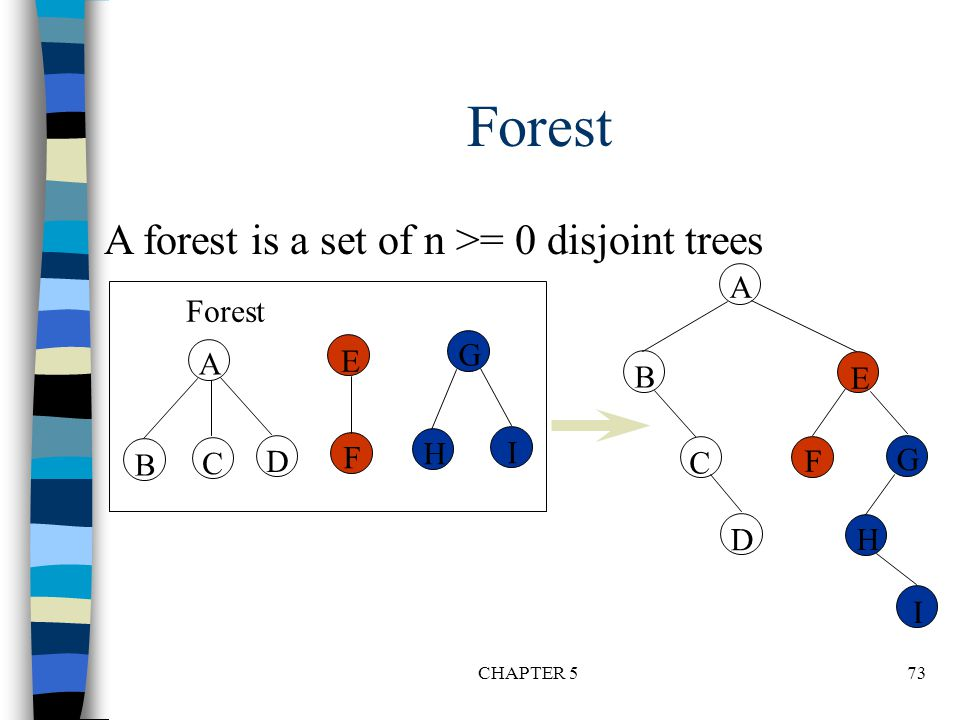 Forest A forest is a set of n >= 0 disjoint trees A Forest G A E B