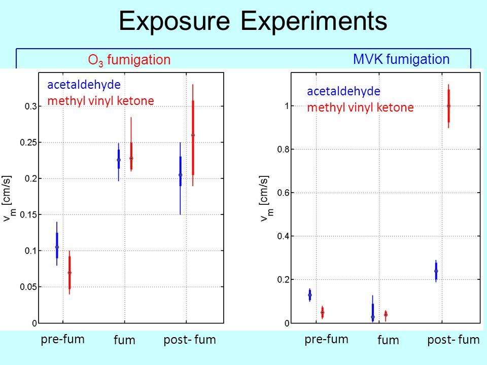 Exposure Experiments O3 fumigation MVK fumigation acetaldehyde