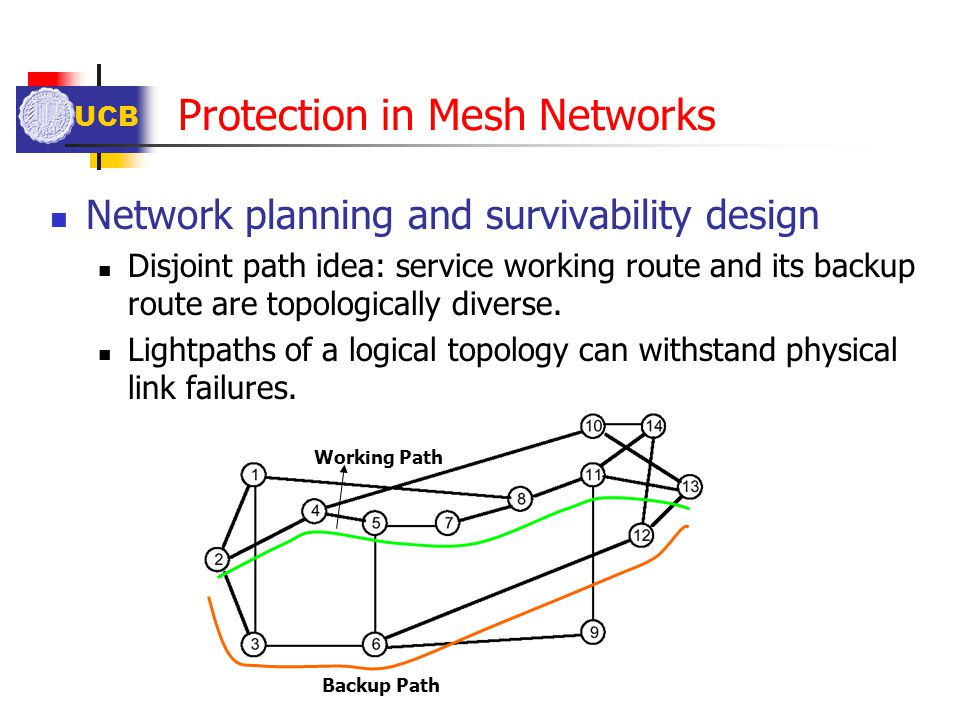 Protection in Mesh Networks