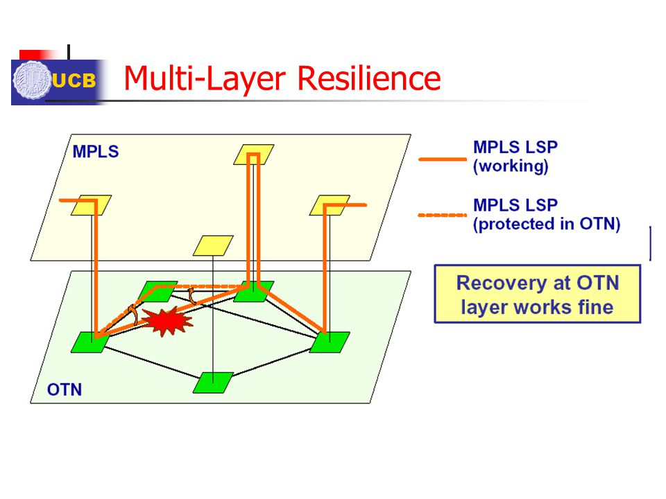 Multi-Layer Resilience