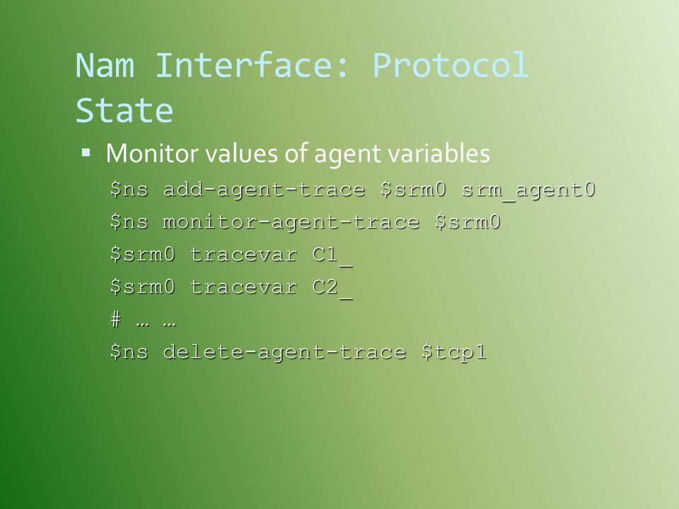 Nam Interface: Protocol State