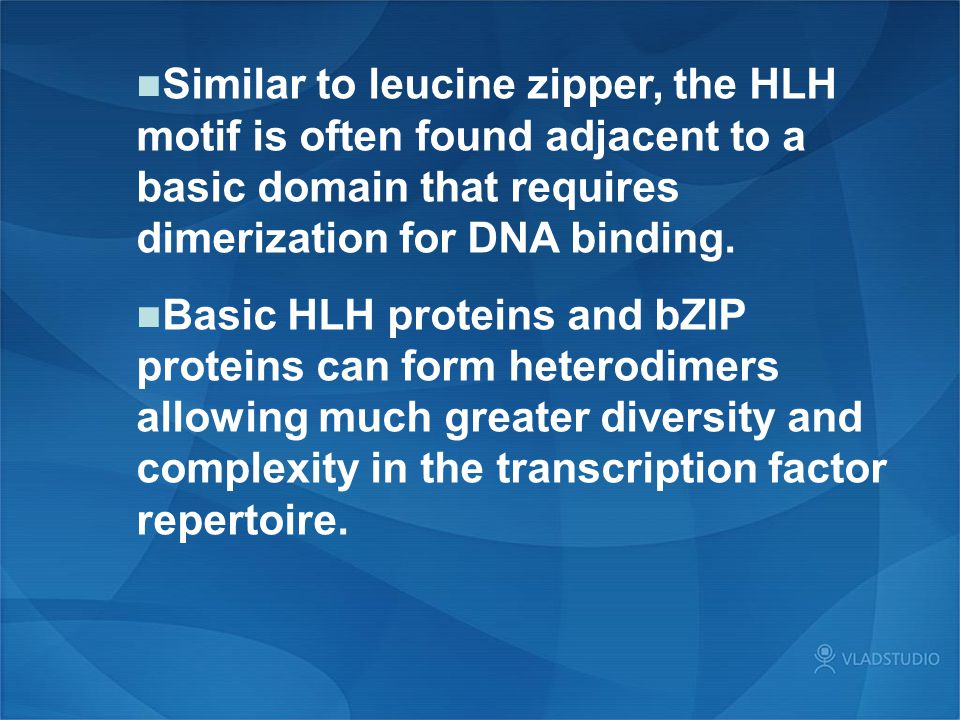 Similar to leucine zipper, the HLH motif is often found adjacent to a basic domain that requires dimerization for DNA binding.