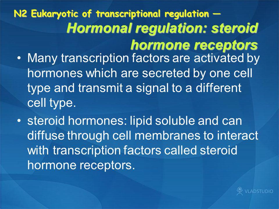 N2 Eukaryotic of transcriptional regulation — Hormonal regulation: steroid hormone receptors