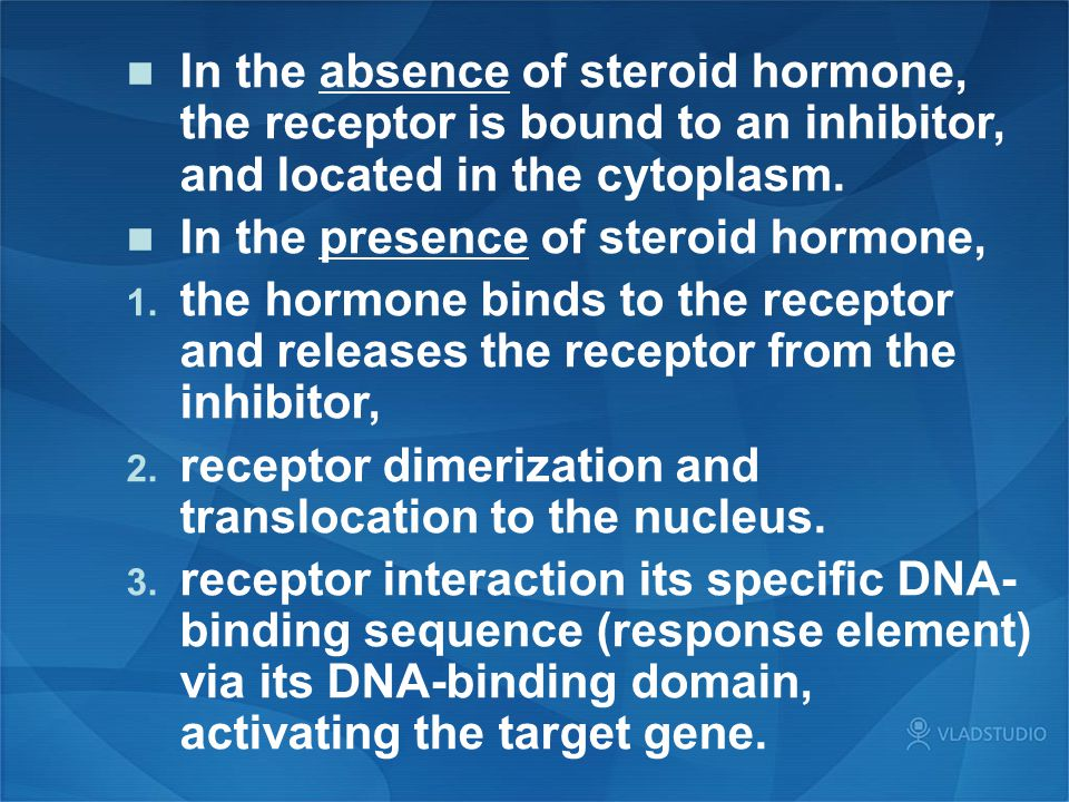 In the absence of steroid hormone, the receptor is bound to an inhibitor, and located in the cytoplasm.