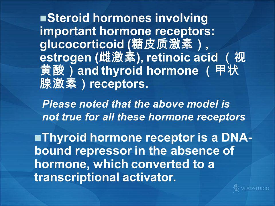 Steroid hormones involving important hormone receptors: glucocorticoid (糖皮质激素), estrogen (雌激素), retinoic acid (视黄酸)and thyroid hormone (甲状腺激素)receptors.
