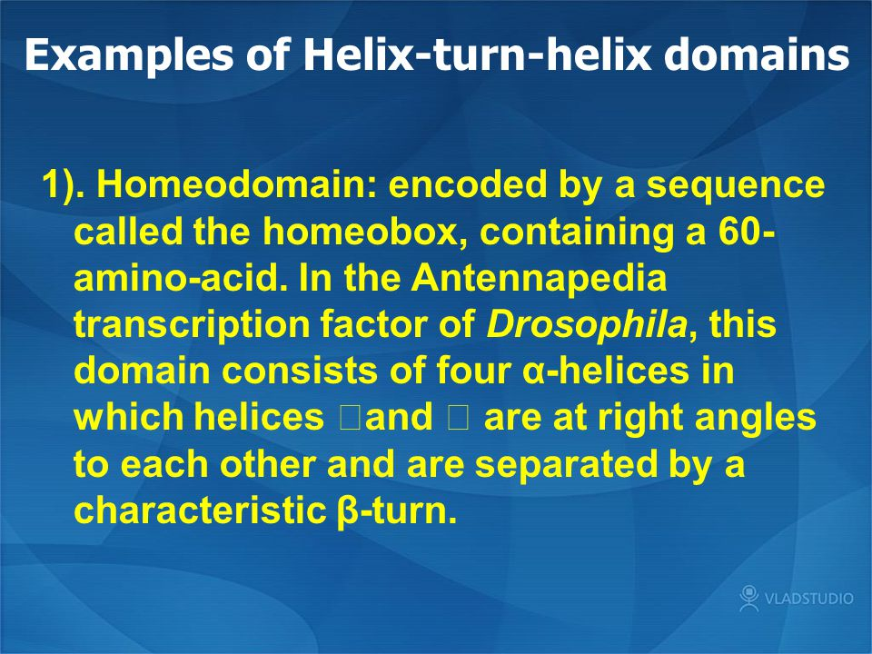 Examples of Helix-turn-helix domains