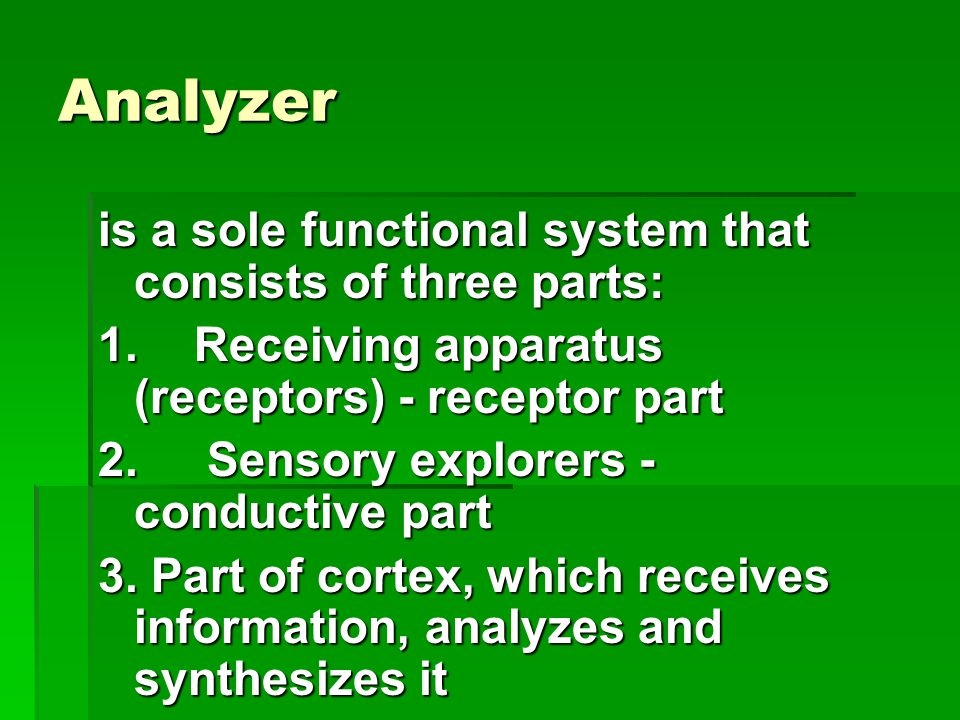 Analyzer is a sole functional system that consists of three parts: