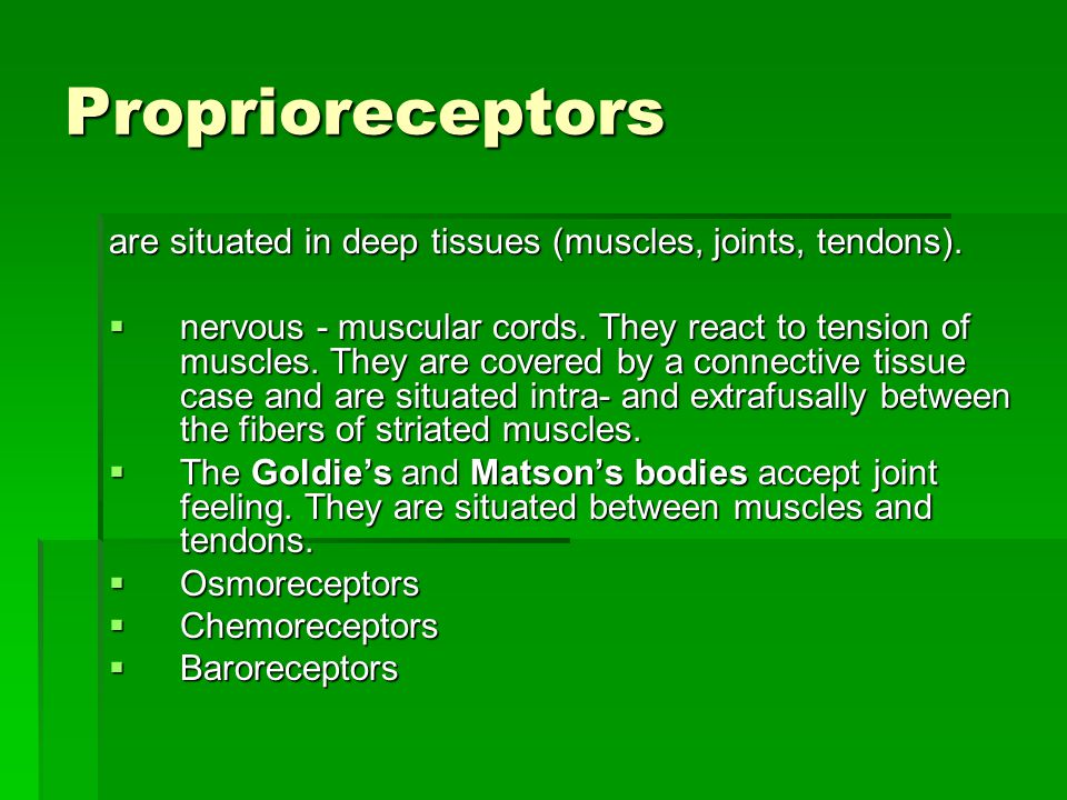 Proprioreceptors are situated in deep tissues (muscles, joints, tendons).