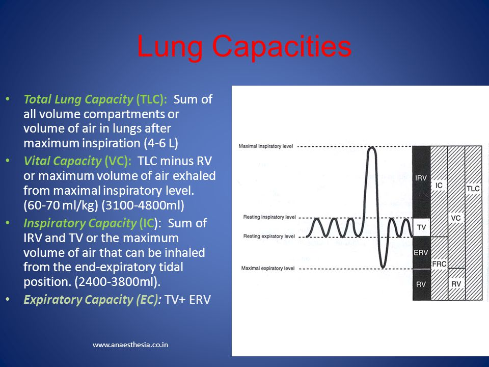 Lung Capacities Total Lung Capacity (TLC): Sum of all volume compartments or volume of air in lungs after maximum inspiration (4-6 L)