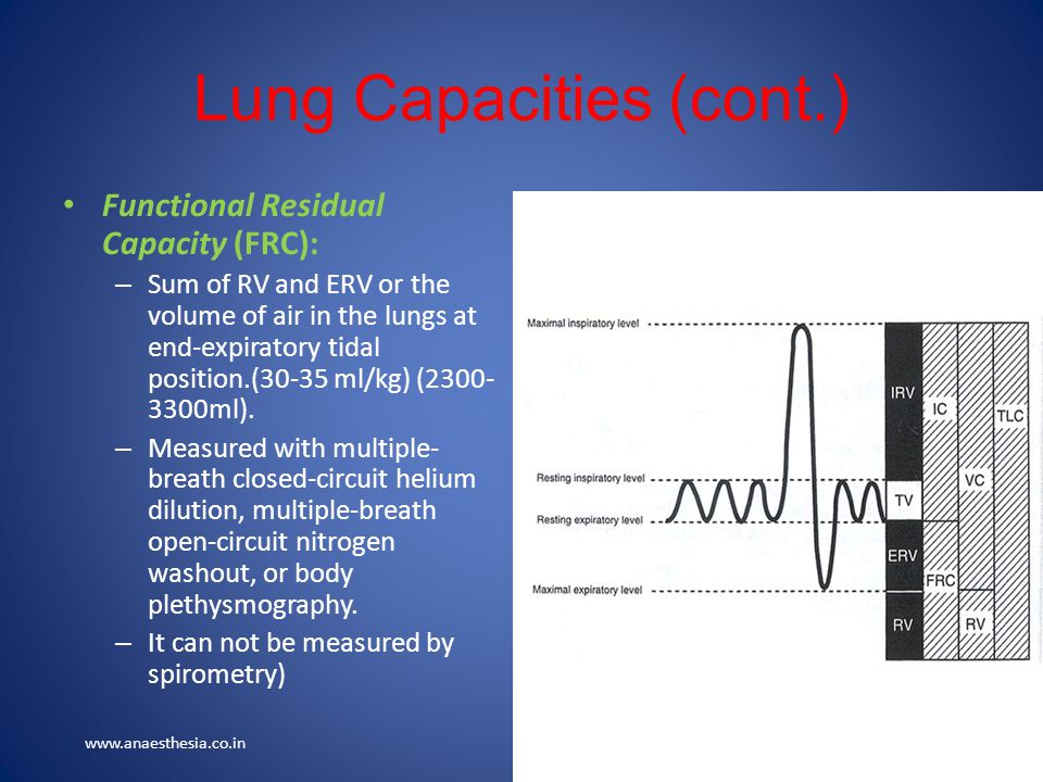 Lung Capacities (cont.)