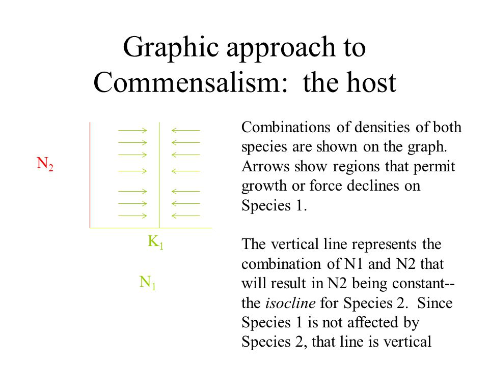 Graphic approach to Commensalism: the host