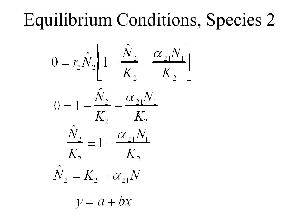 Equilibrium Conditions, Species 2
