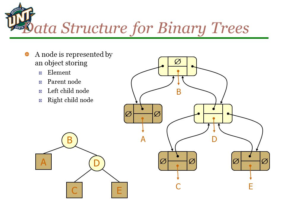 Data Structure for Binary Trees