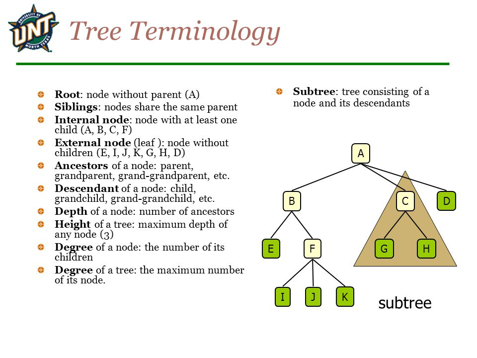 Tree Terminology subtree