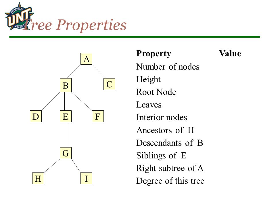 Tree Properties Property Value Number of nodes Height Root Node Leaves