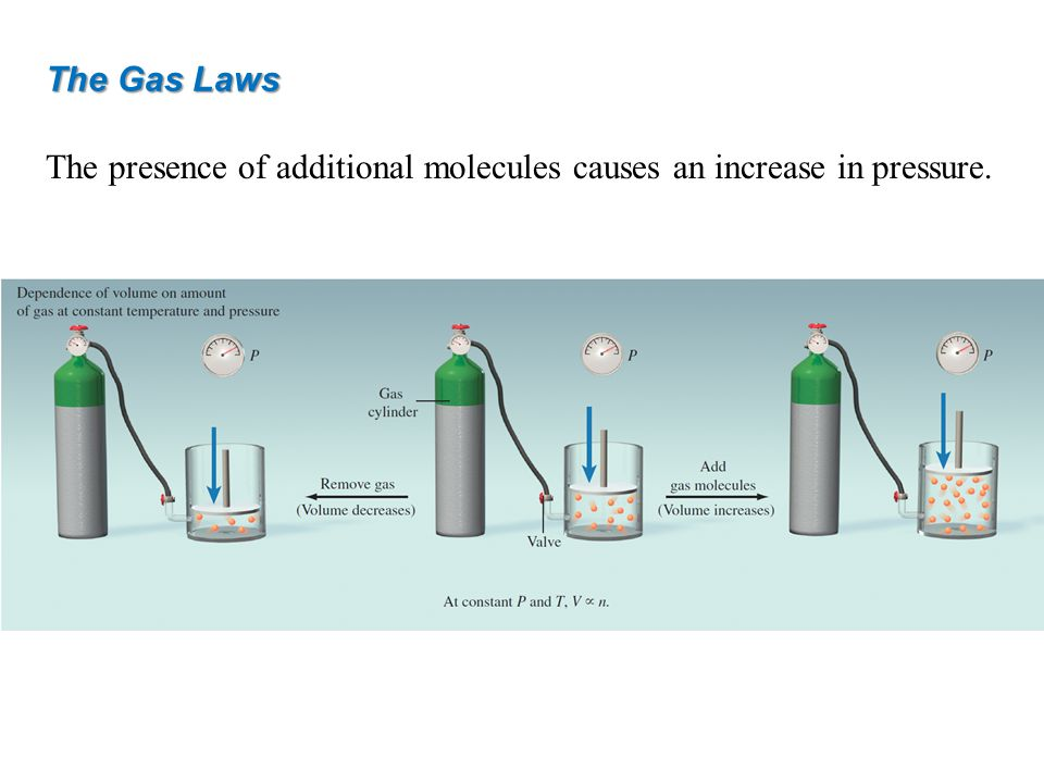 The Gas Laws The presence of additional molecules causes an increase in pressure.