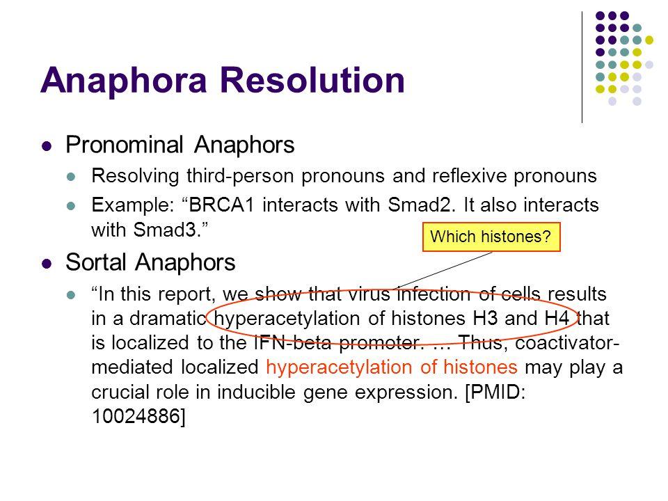 Anaphora Resolution Pronominal Anaphors Sortal Anaphors