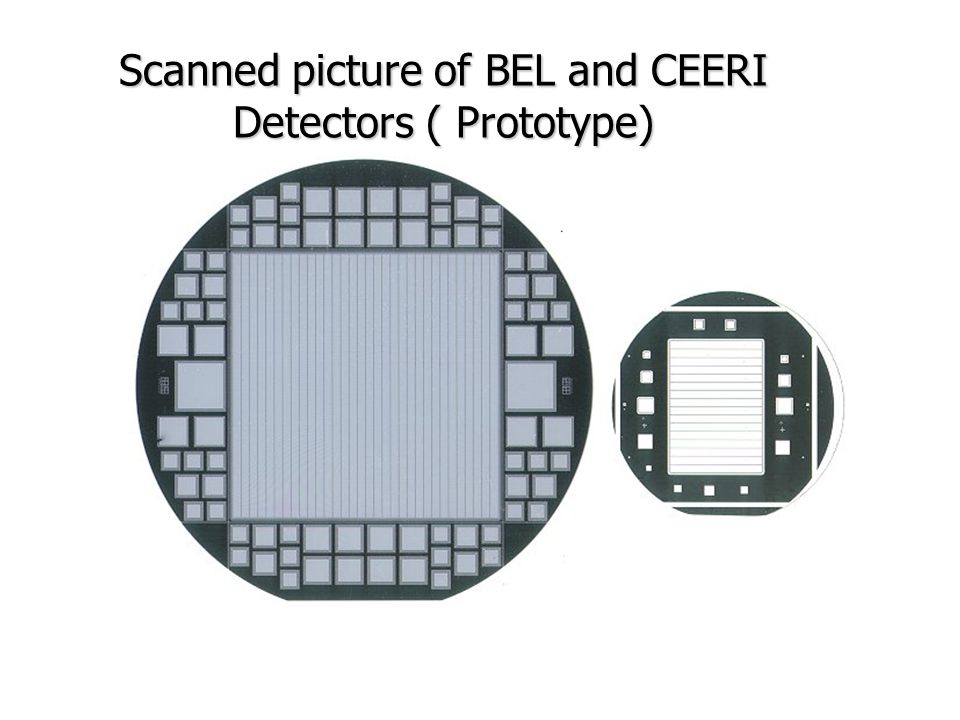 Scanned picture of BEL and CEERI Detectors ( Prototype)