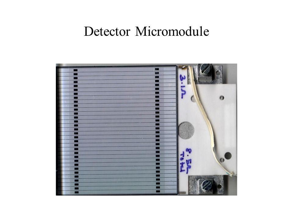 Detector Micromodule