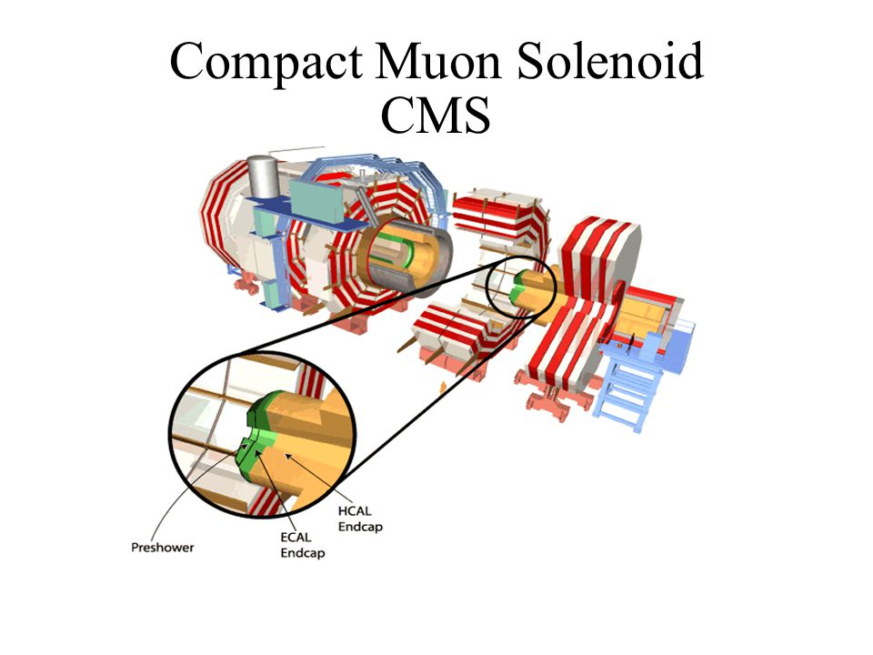 Compact Muon Solenoid CMS