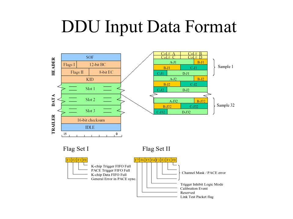 DDU Input Data Format
