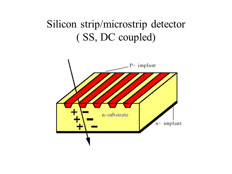 Silicon strip/microstrip detector ( SS, DC coupled)