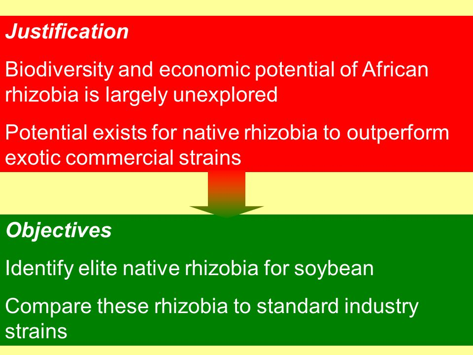 Justification Biodiversity and economic potential of African rhizobia is largely unexplored.