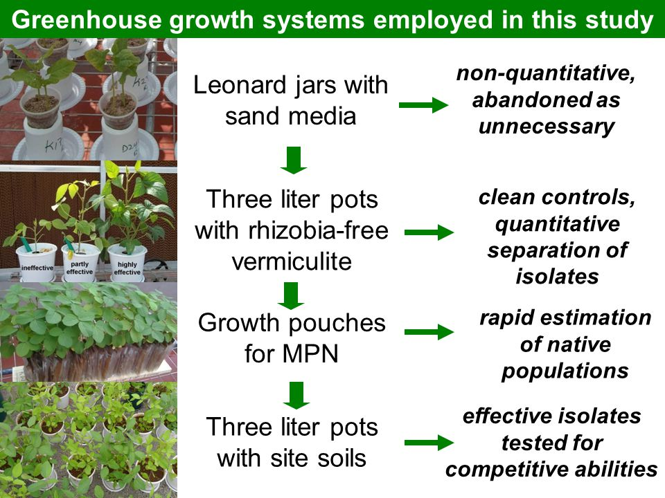 Greenhouse growth systems employed in this study