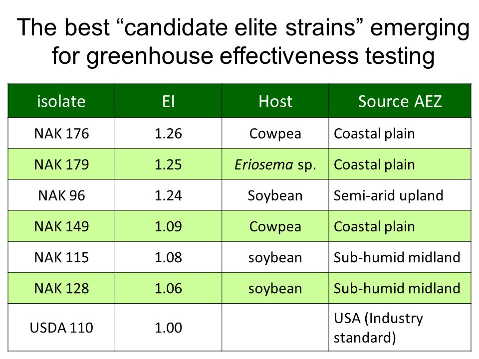 The best candidate elite strains emerging for greenhouse effectiveness testing