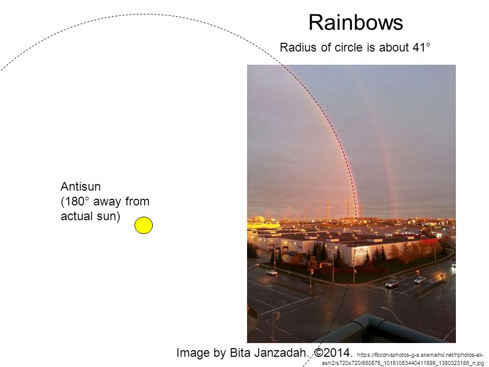 Rainbows Radius of circle is about 41° Antisun