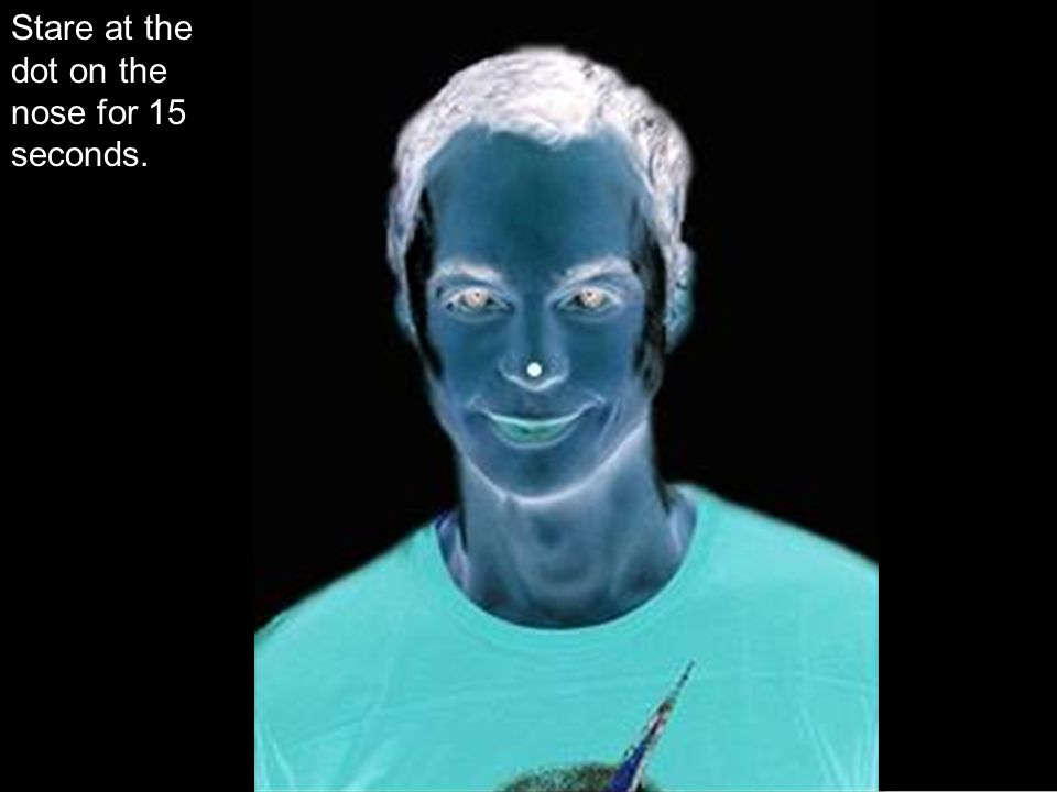 Stare at the dot on the nose for 15 seconds.