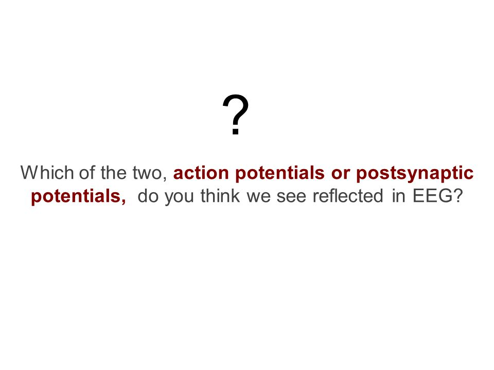 Which of the two, action potentials or postsynaptic potentials, do you think we see reflected in EEG