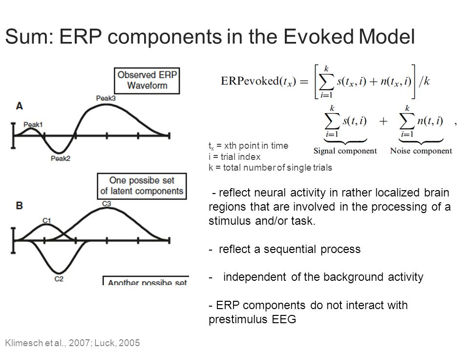 Sum: ERP components in the Evoked Model
