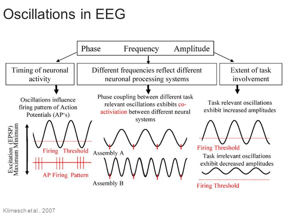 Oscillations in EEG Klimesch et al., 2007