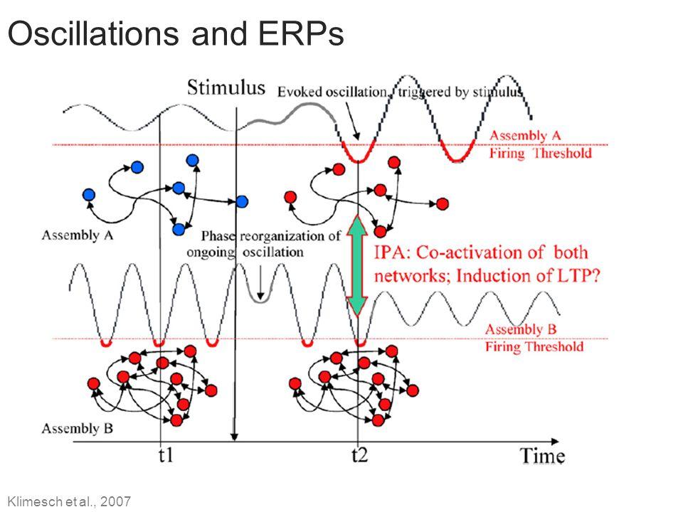 Oscillations and ERPs Klimesch et al., 2007