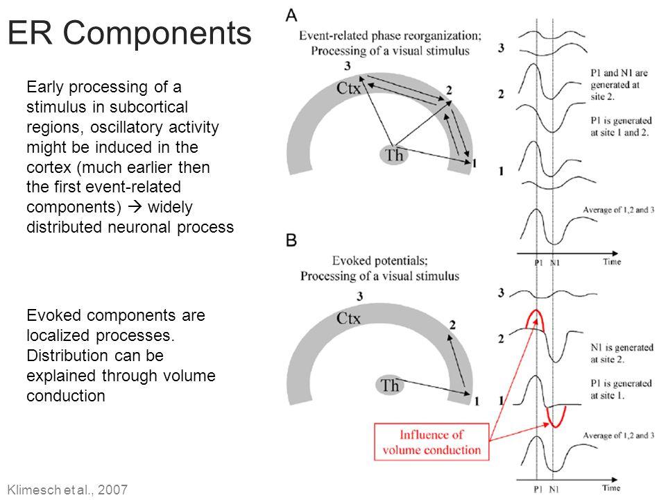 ER Components
