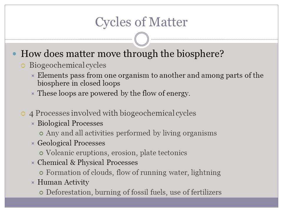 Cycles of Matter How does matter move through the biosphere