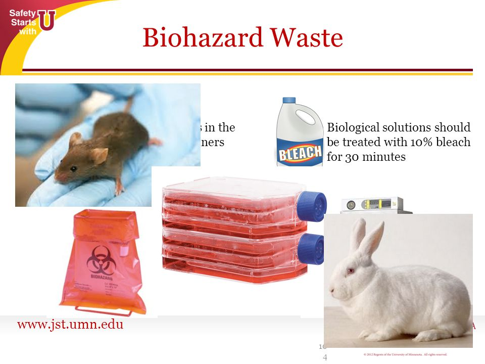 Biohazard Waste Place needles in the sharps containers