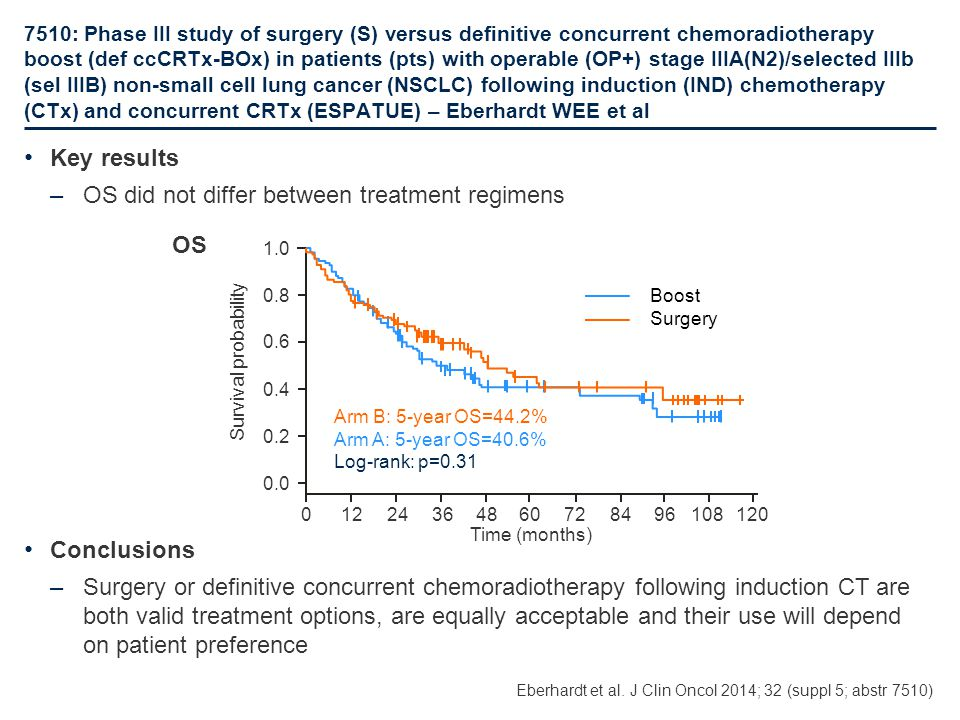 OS did not differ between treatment regimens