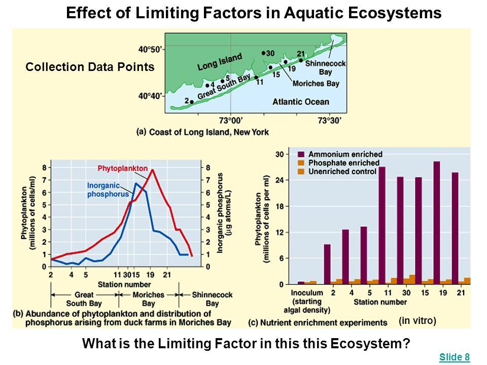 Effect of Limiting Factors in Aquatic Ecosystems