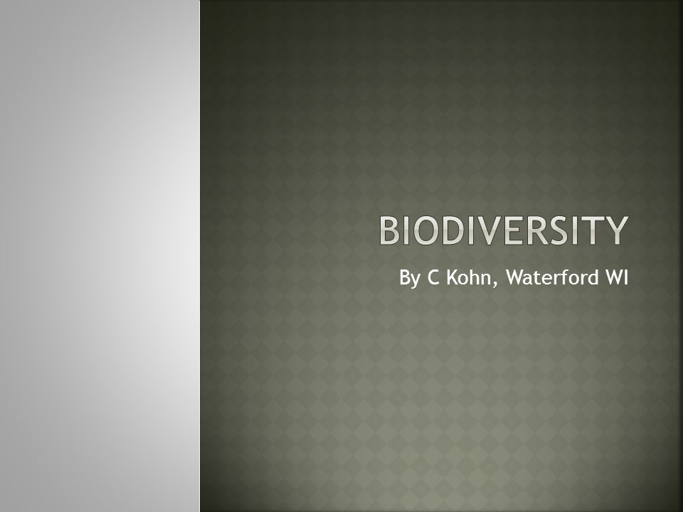 Biodiversity By C Kohn, Waterford WI