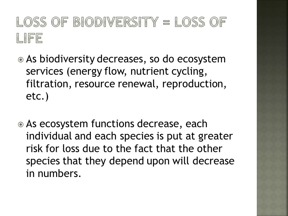 Loss of Biodiversity = Loss of Life
