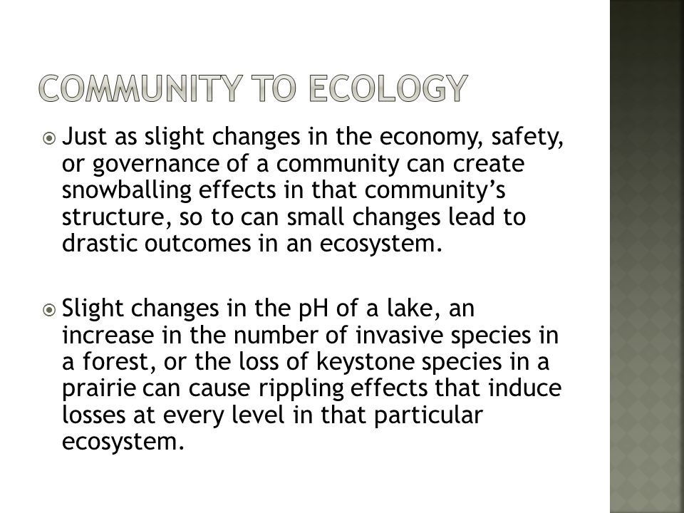 Community to Ecology