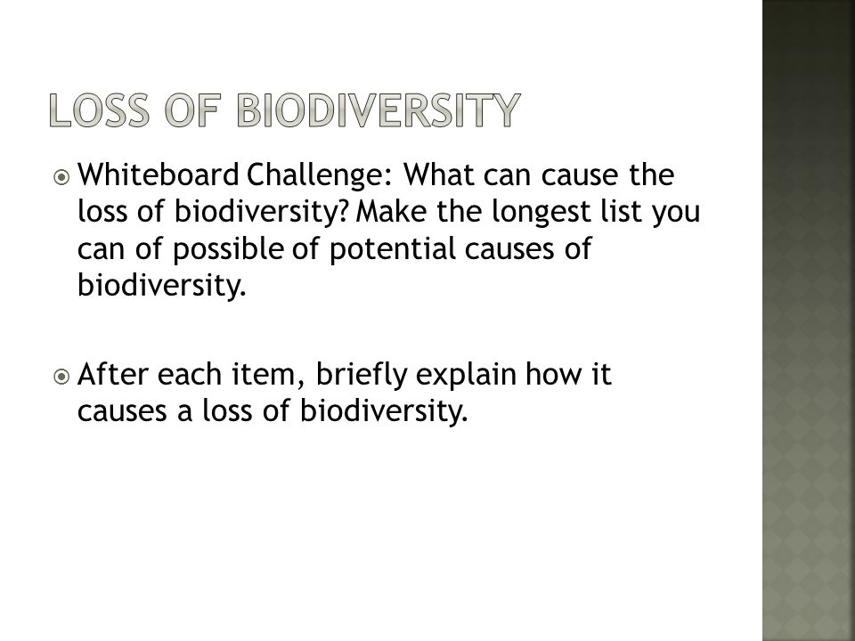 Loss of Biodiversity