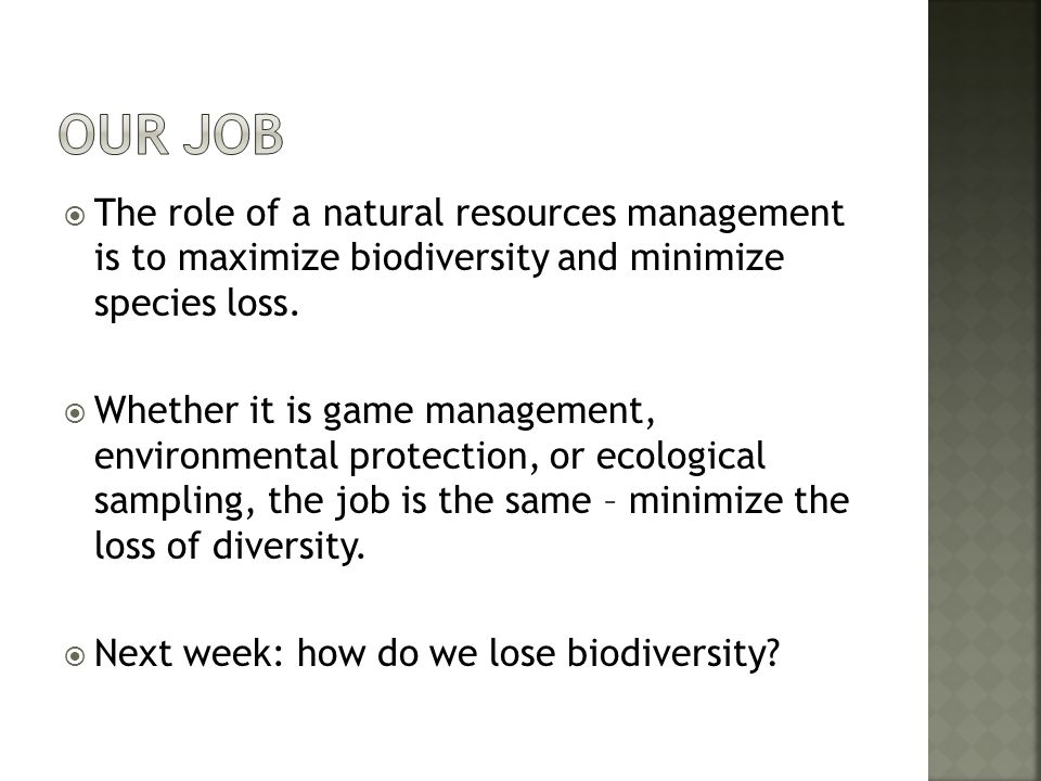 Our Job The role of a natural resources management is to maximize biodiversity and minimize species loss.